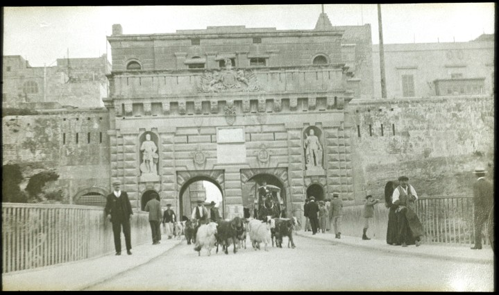 L0045092 Goats at Port Real Credit: Wellcome Library, London. Wellcome Images images@wellcome.ac.uk http://wellcomeimages.org A lantern slide of goats and Port Reale, Malta. Photograph possibly taken by Sir David Bruce. 1900s Royal Army Medical Corps Muniment Collection Published: - Copyrighted work available under Creative Commons Attribution only licence CC BY 4.0 http://creativecommons.org/licenses/by/4.0/