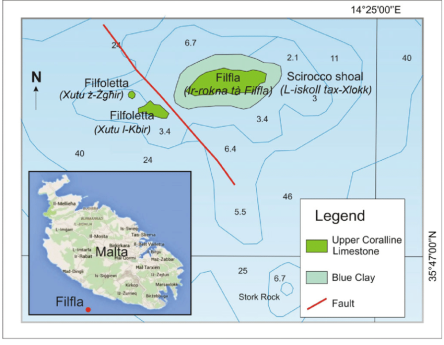 Geographical-and-geological-sketch-of-the-islet-of-Filfla-Source-Geological-map-redrawn